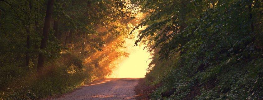 Breathwalk Weg im Sonnenlicht
